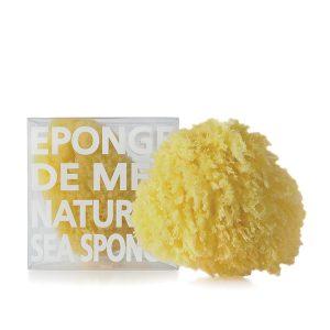 COMPAGNIE DE PROVENCE Natural Sea Sponge M Gift Box